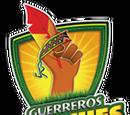 Guerreros Pericúes