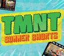 TMNT Summer Shorts (2017)
