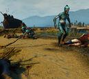 The Witcher 3 treasure hunts