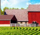 Rural habitat
