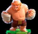 Boxer Giant