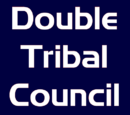 Double Tribal Council