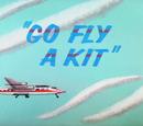 Go Fly A Kit