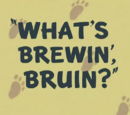 What's Brewin', Bruin?