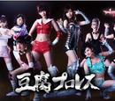 Tofu Pro Wrestling