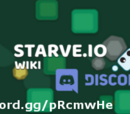 Discord Info
