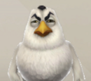 Белые птицы Angry Birds Evolution