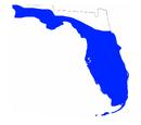 Florida Flooding Crisis (QuickWhitt7)