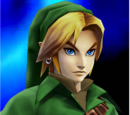 A Day in the Life: Link