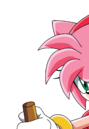 Amy Rose (Sonic X).png