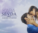 Amor eterno (serie turca)