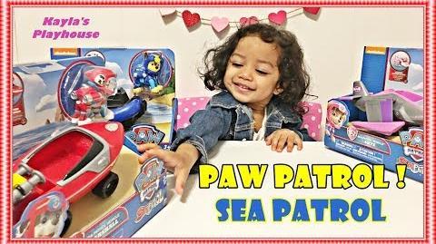 KaylasPlayhouse/My Paw Patrol Toy Collection