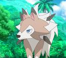 Olivia's Lycanroc (anime)