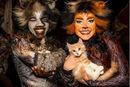 Electra Pounce kittens1 US16.JPG