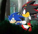 Sonic the Hedgehog (Character)/Ships/Slash