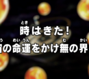 Episodio 96 (Dragon Ball Super)