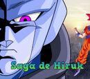 Saga de Hiruk