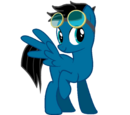 Pony video maker