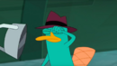 Agent P punches Me Negative.png