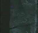 Weißer Wanderer (Die Länder der Nacht)