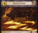 Burned Fields (ITE)