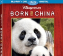 Born in China (video)