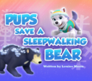 Pups Save a Sleepwalking Bear