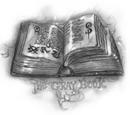 Das Graue Buch