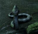 Enfant de la serpent géante