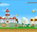 Levels in New Super Mario Bros. Wii