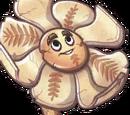 Cro-Magnolia