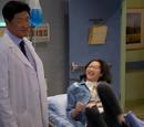 Episodes airing in 2017