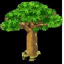 Baobab Tree.png