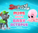 Sea Patrol: Pups Save a Baby Octopus