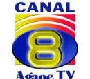 Series transmitidas por Canal 8
