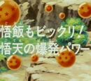 Episodio 206 (Dragon Ball Z)