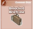 Unlocked Briefcase