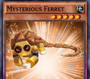 Mysterious Ferret