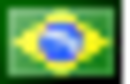 Flag-icon-br.png