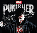 The Punisher (TV series)