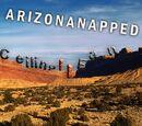 Intern Aaron Special: ARIZONANAPPED