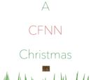 A Ceiling Fan News Network Christmas!