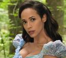 Cinderella (season 7)