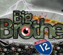 Big Brother 12