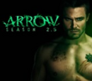 Arrow: Sezon 2.5