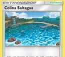 Colina Saltagua (TCG)