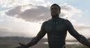Black Panther (film) 30.jpg