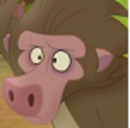 Baboons-profile.png