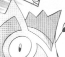 Wally's Pokémon