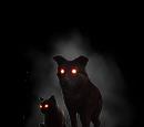 Чорна Кішка й Чорний Пес